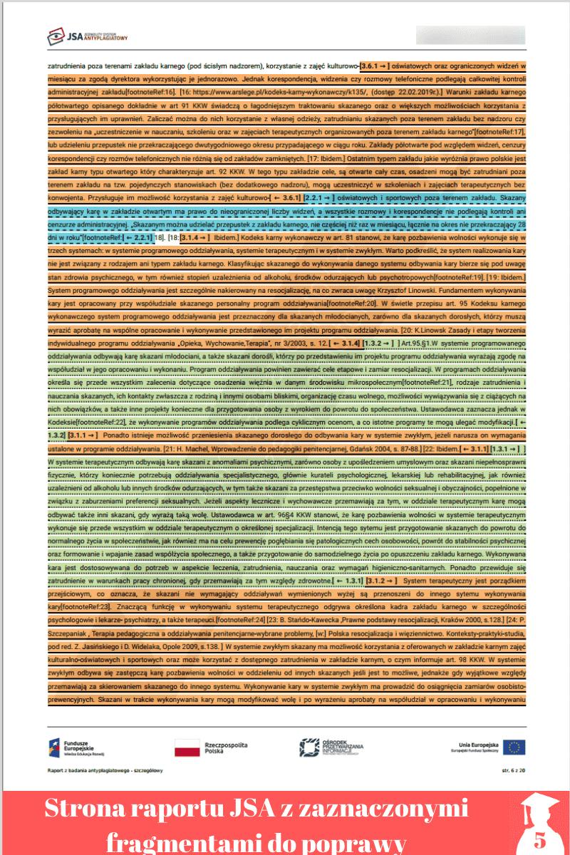 poprawa plagiatu jednolity system antyplagiatowy raport szczegółowy 3 strona